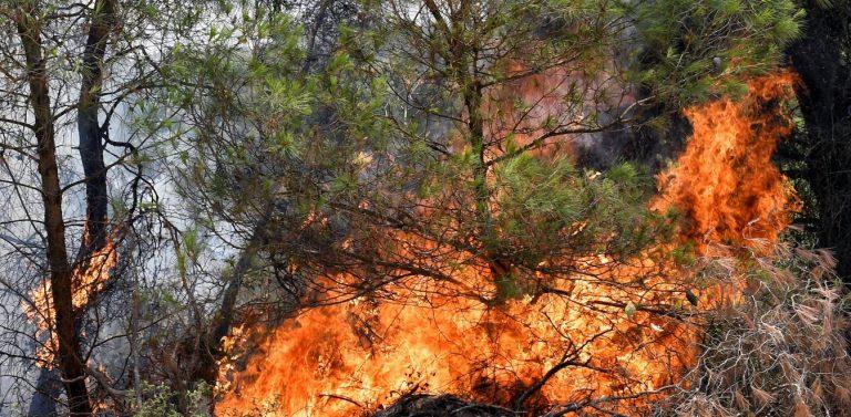 Η φωτιά κοντά στο διυλιστήριο/Κτυπούν οι καμπάνες για εκκένωση! (ΒΙΝΤΕΟ)